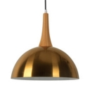 Dome Shade Office Suspension Light Metal 1 Light Contemporary Hanging Light in Brass Finish
