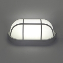 Bathroom Capsule LED Flush Mount Light Acrylic Radar Sensor/Sound Activated Ceiling Lamp