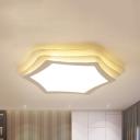 Acrylic Hexagon LED Ceiling Mount Light Modern Warm/White Lighting Flush Light for Bedroom