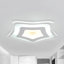 Simple Style Star Ceiling Mount Light Acrylic Warm/White Lighting LED Ceiling Fixture for Shop