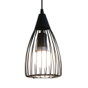 Industrial Black Hanging Light with Wire Frame 1 Light Metal Pendant Lamp for Shop Foyer