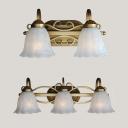 Glass Flower Shade Vanity Light 2/3 Lights Traditional Sconce Light in Brass for Dressing Room