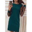 Womens Chic Polka Dot Mesh Panel Long Sleeve Round Neck Mini Sheath Dress