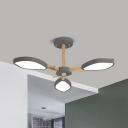 Boy Bedroom Petal Chandelier Acrylic 3/6/8 Lights Modern Style Gray/Green/White Hanging Light