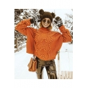 Ladies Winter Plain Nep Knitted Print Roll Neck Long Sleeve Sweater