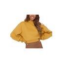 New Popular Mock Neck Long Sleeve Plain Cropped Loose Sweatshirt