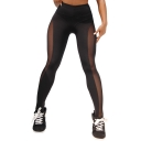 Womens Stylish Sheer Mesh Panel Sport Training Yoga Leggings Pants for Women