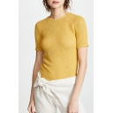 Summer New Arrival Yellow Short Sleeve Round Neck Sheer Mesh T Shirt