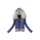 New Arrival Knit Panel Fur Hooded Zipper Warm Short Down Coat