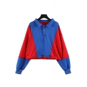 Lapel Collar Color Block Long Sleeve Blue Crop Polo Sweatshirt