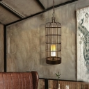 Birdcage Pendant Light Fixtures Retro Iron and Resin 1 Head Candle Hanging Lights for Restaurant