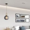 Modern Lantern Hanging Light 1 Light Smoke Frosted Glass Living Room Pendant Light in Gold