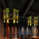 Bottle Hanging Chandelier Contemporary Glass and Metal 6 Light Hanging Plant Pendant for Restaurant