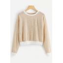 Fashion Simple Khaki Round Neck Long Sleeve Casual Crop Sweater