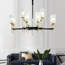 Novelty Chandelier Light Transitional Metal Glass Ceiling Chandelier in Black and Brass for Living Room