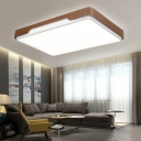 Acrylic Square/Rectangle Flush Light Fixtures LED Contemporary Ceiling Lamp in Brown