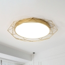 Round Flush Mount Ceiling Light with Wire Guard Metal 1 Light 21.5