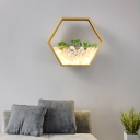 Metal Hexagon Wall Mount Light with Artificial Succulents LED Modern Wall Light Fixture