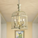 Foyer Birdcage Pendant Light with Rose Metallic 12.5