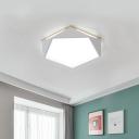 Gray/White/Blue/Green Pentagon Flush Light Macaron Acrylic LED Ceiling Lamp in Warm/White/Natural, 12.5