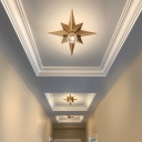 Black/Bronze Anise Star Flush Ceiling Light Contemporary Metal 1 Head Stairway Flush Mount Light Fixture