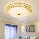 1 Light Bowl Flushmount Lighting with Peacock Design Modern Led Crystal Flush Lamp in Warm/White Light