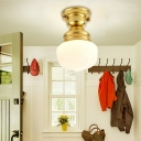 Schoolhouse Opal Glass Ceiling Light Fixture Contemporary 1 Light Ceiling Mounted Light in Gold Finish