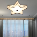 Clear Crystal Star Flush Lamp with Acrylic Diffuser Nordic Bedroom Lighting, 14