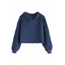 New Trendy Plain Long Sleeve Warm Fluffy Fleece Crop Hoodie