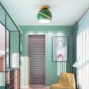 Green/Pink/Gray Spherical Flush Mount Light Fixture Contemporary Metal 1 Head Indoor Ceiling Mounted Light