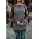 Womens Simple Colorblock Raglan Long Sleeve Casual Dark Grey Pullover Sweatshirt Top