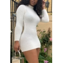 Womens Fashion Solid Color Long Sleeve Turtle Neck Mini Plush Bodycon Dress