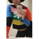 Cute Daisy Printed Color Block Stripes Long Sleeve Ribbed Knit Slim Fit Casual Pullover Sweater