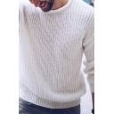 Mens Simple Plain Long Sleeve Round Neck Purl Knit Casual Pullover Sweater