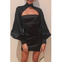 Womens Vintage Plain Black Lantern Long Sleeve Cutout Front High Collar Mini Party Dress