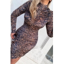 Womens Simple Leopard Pattern Long Sleeve High Collar Brown Mini Ruched Dress for Party