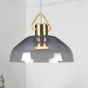 Bowl Ceiling Light Modernist Smoke Glass 1 Bulb Hanging Lamp Kit in Warm/White Light for Living Room