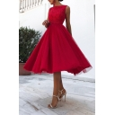Gorgeous Women's Red Sleeveless Crew Neck Open Back Floral Embroidered Lace Pleated Flared A-Line Evening Gown Dress