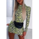 Womens Cool Snakeskin Printed Long Sleeve High Neck Casual Club Wear Mini Dress in Green