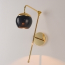 Modern Gooseneck Sconce Light 1 Bulb Brass Finish Wall Mount Lamp with Black/Clear Glass Shade