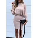 Ecru Elegant Ladies' Long Sleeve Mock Neck Zipper Back Button Mini Tight Dress