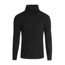 Winter Casual Solid Color Turtle Neck Long Sleeve Slim Fit Ribbed Knit Pullover Sweater for Men