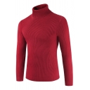 Mens Simple Long Sleeve Turtle Neck Casual Plain Ribbed Knit Slim Fit Pullover Sweater