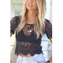 Summer Sexy Black Round Neck Short Sleeve Zip Back Hollow-Out Lace Sheer Mesh Cropped T-Shirt