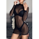 Womens Sexy Sheer Mesh Long Sleeve Mock Neck Slim Fit Black Plain Mini Dress