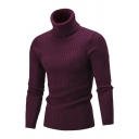 Mens Fashionable Plain Long Sleeve Turtleneck Casual Rib Fitted Knit Pullover Sweater Top