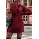 Plain Trendy Women's Long Sleeve Turtleneck Knit Oversize Short Sweater Dress