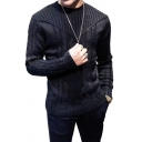 Unique Cable Knit Long Sleeve Round Neck Slim Casual Pullover Sweater for Men