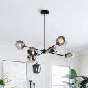 6 Heads Living Room Hanging Chandelier Modern Black Ceiling Pendant Light with Ball Smoke Glass Shade