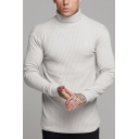 Mens Leisure Solid Color Turtle Neck Long Sleeve Ribbed Knit Pullover Sweater